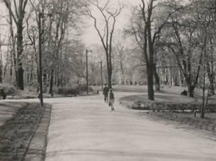 Park Miejski 1941